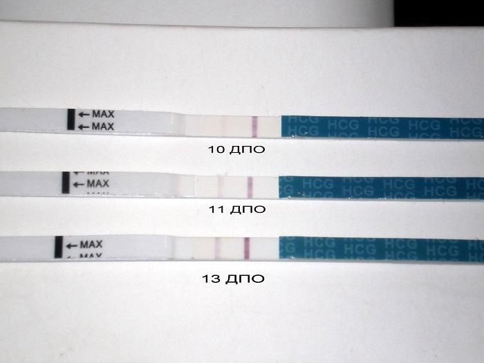 Сколько полосок при беременности должно быть на тесте