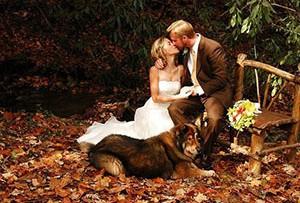 Характеристика бронзовой свадьбы