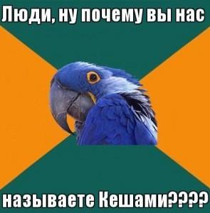 Подходящее имя для попугая мальчика