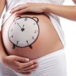 Календарь беременности: рассчитать срок по неделям и определить дату родов онлайн