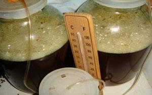 Подготовка медовухи к брожению