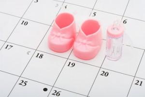 Пол по календарю зачатия