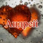 Значение имени Андрей для мальчика: храбрый ребенок, преданный друг, пылкий возлюбленный, ответствен...