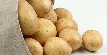 что приготовить на ужин из картошки простые и необычные рецепты