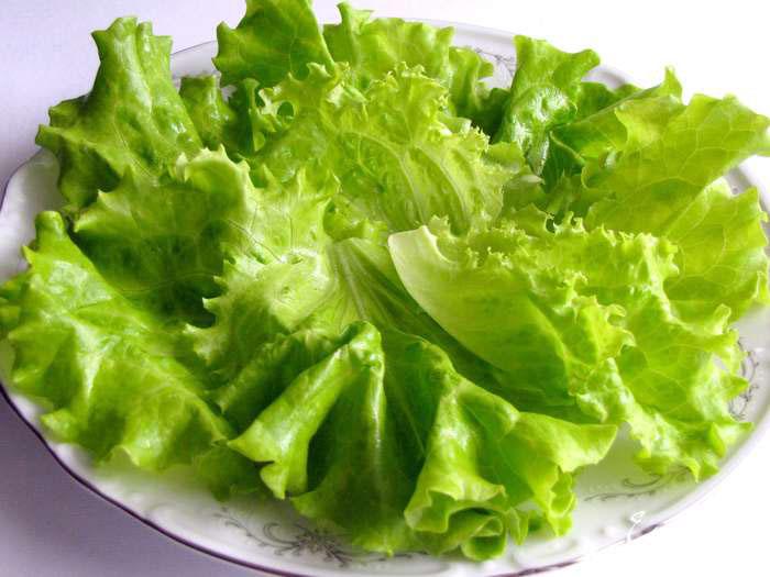 салат дно рецепт с фото
