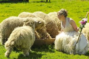Особенности срока шерстяной свадьбы