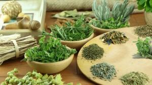 Какие принимать мочегонные травы при беременности