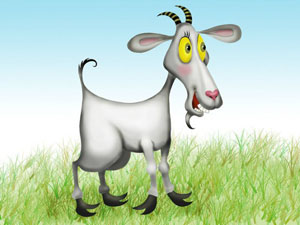 Здоровье женщины рожденной в год козы