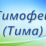 Значение имени Тимофей для мальчика, его происхождение и влияние на отношения в любви, семье, бизнес...