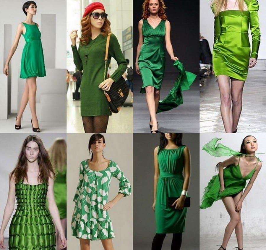 Модная одежда зеленого цвета
