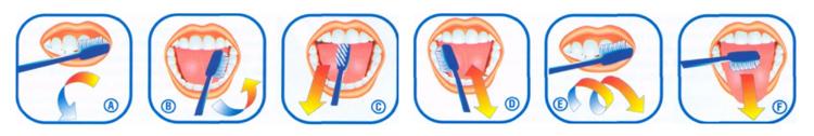Памятка по уходу за зубами у детей