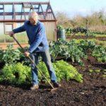 Как подготовить грядки осенью к посадке весной различных растений