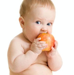 Введение прикорма малышу