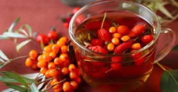 Из каких растений можно получить полезный напиток