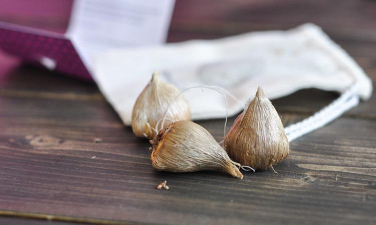 Фрезия - хранение луковиц, фото