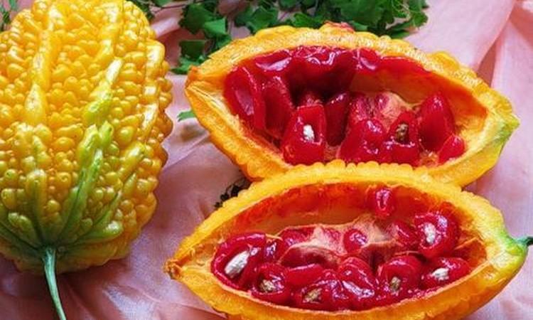Момордика - выращивание из семян
