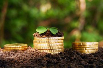 Порядок налогообложения земельных участков