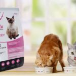 Корма для кошек Blitz – с любовью к четверолапым
