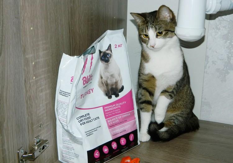 Корма для кошек Blitz