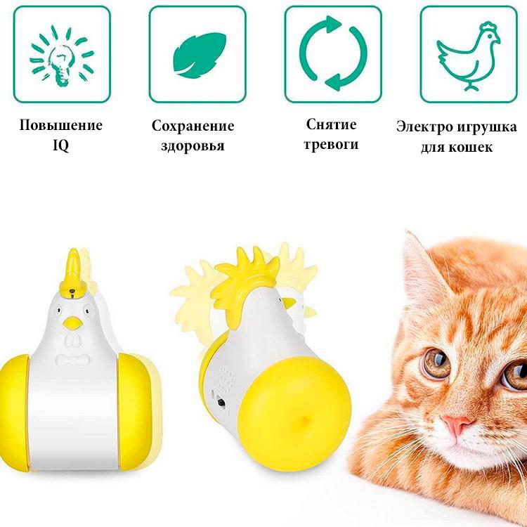 Особенности лазерной игрушки для кошек