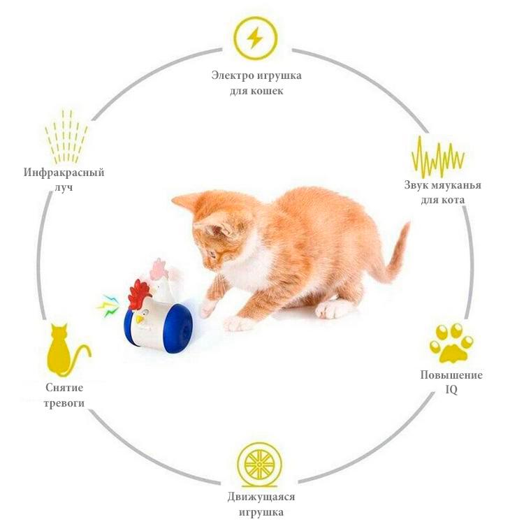 Польза лазерной игрушки для кошек